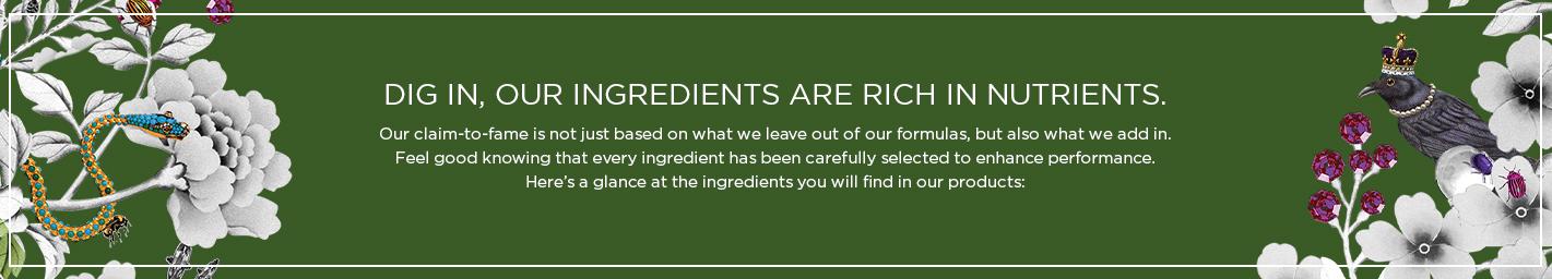 Clean Ingredients